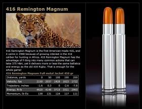 Norma 416 Rem 450 gr FMJ Woodleigh