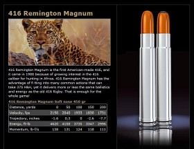 Norma 416 Rem 450 gr Softnose Woodleigh