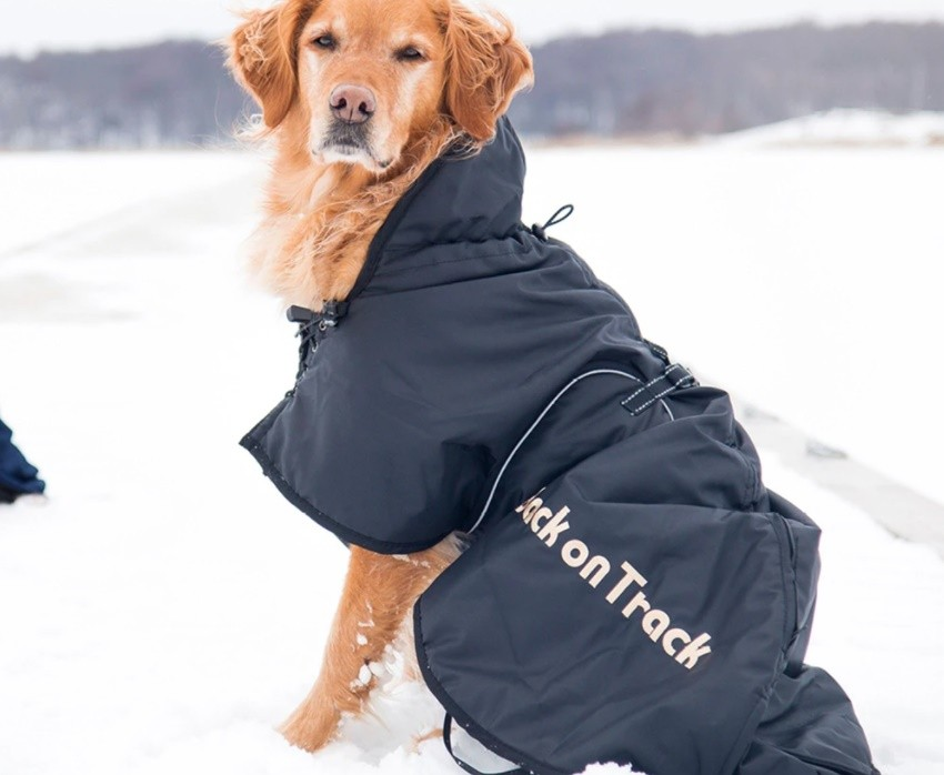 Back On Track Hundtäcke Fodrat