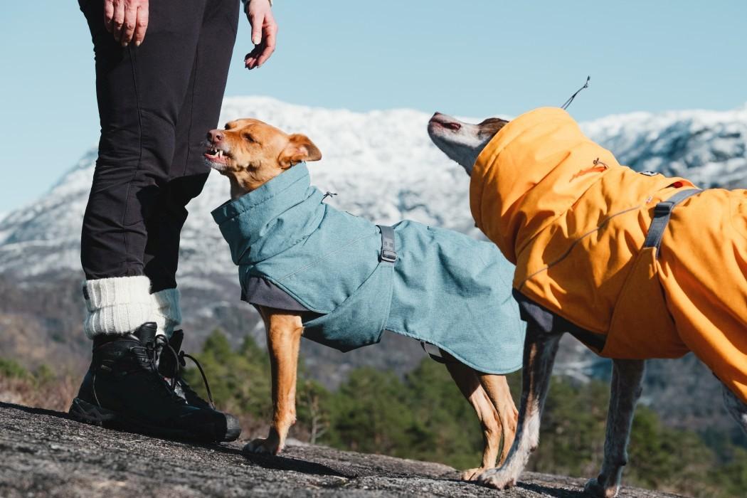 Hurtta Expedition Parka Björnbär
