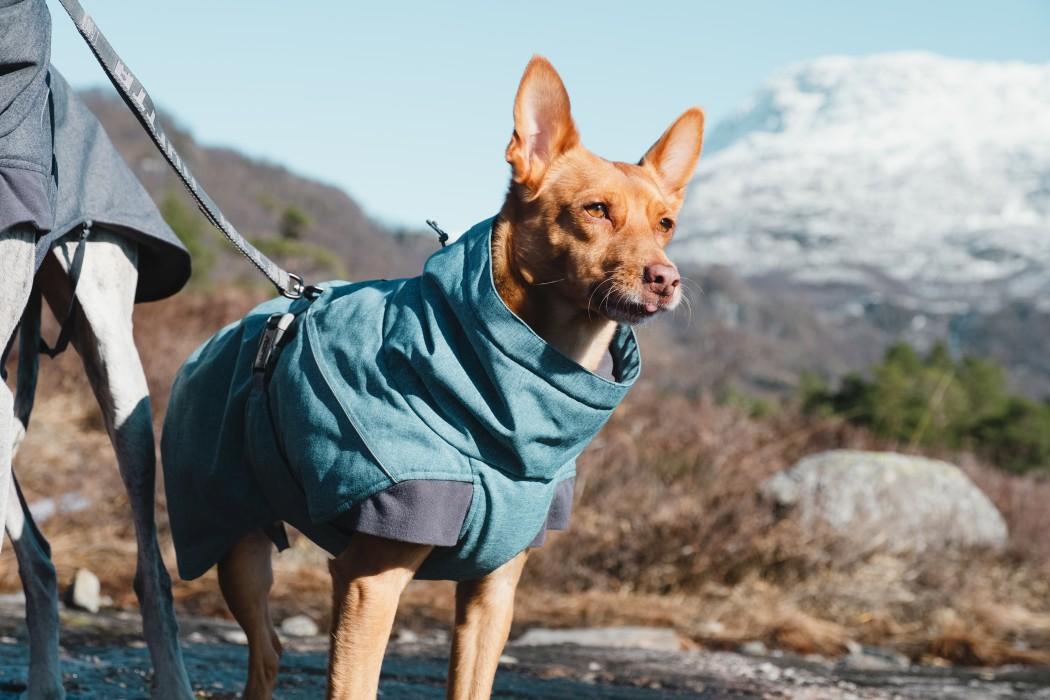 Hurtta Expedition Parka Blåbär