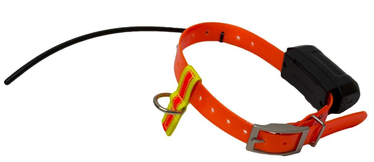 Edvardsons Koppelfäste till GPS-halsband