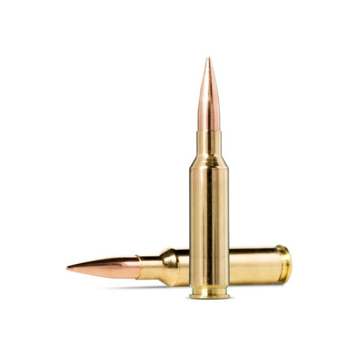 Norma 308 Win Golden Target 9,7g